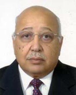 Seif-El-Din-Abdel-Salam-Heikal